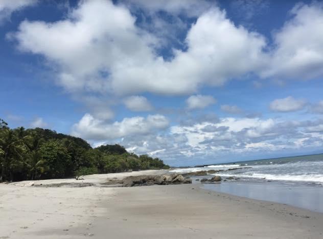 playas de montezuma